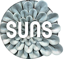SUNS Grey Collection Logo